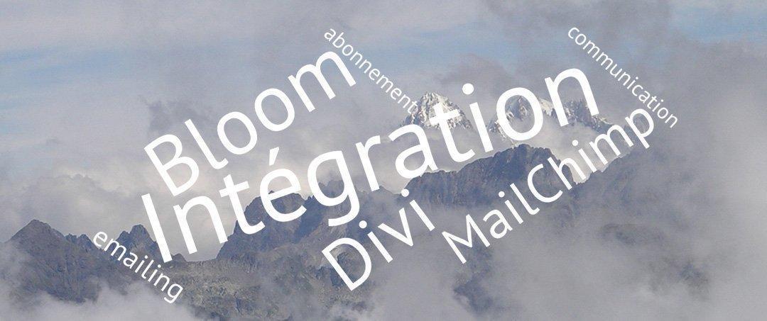 Intégrez MailChimp avec Bloom